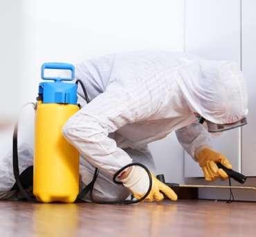 MGIC Pest Control Services